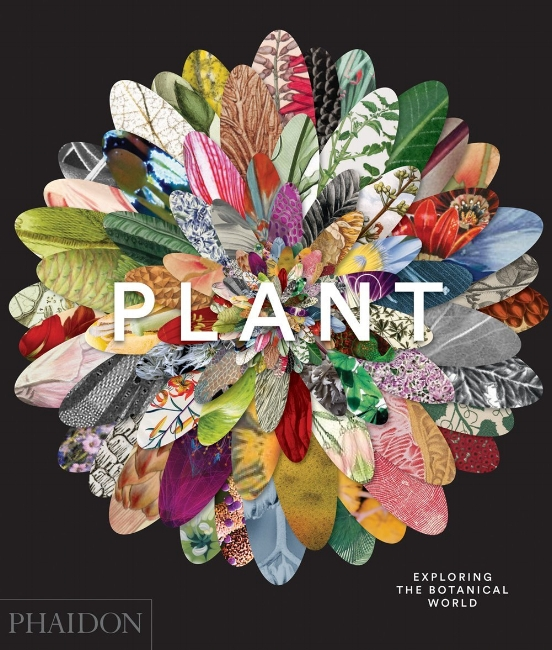 Plant: Exploring the Botanical World.  Phaidon Press. features my Bottle Gourd etching amidst 300 stunning botanical images ranging from 9400 B.C. to present, revealing the extraordinary beauty of plants and highlighting their fascinating role in our culture.