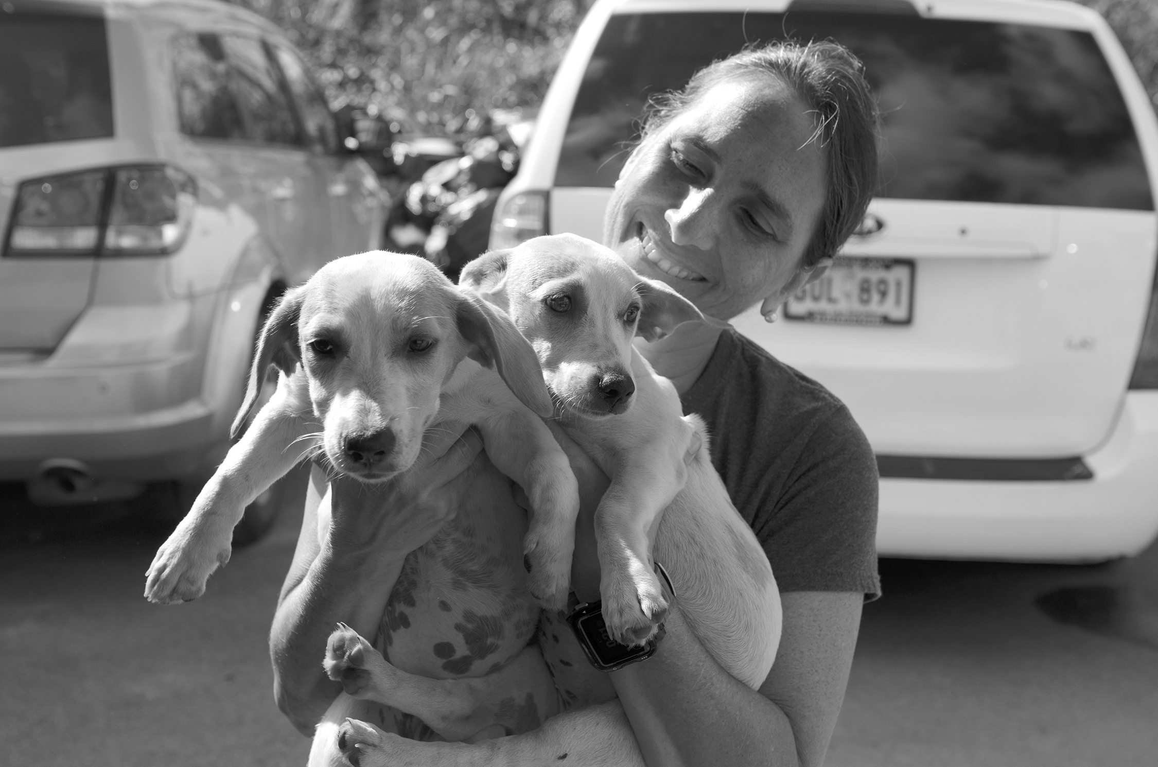 ACTIVITIES - The National Centers for Environmental Information recorded 16 major environmental disasters in 2017. Over the past two years I Love My Dog So Much, LLC has been thankful to raise and deploy over $300,000 in response to natural disasters in Texas, Louisiana and Puerto Rico. These funds were used to ensure that dogs and other pets impacted by these natural disasters had access to food, shelter and medication, as well as providing temporary foster or permanent adoption services for animals in need.Below are images from our past efforts.Click to Learn More