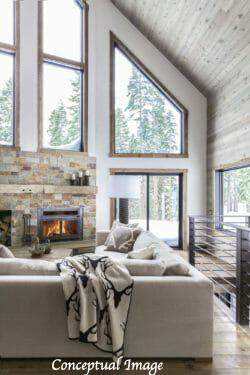 Concept Image fireplace barn3.png