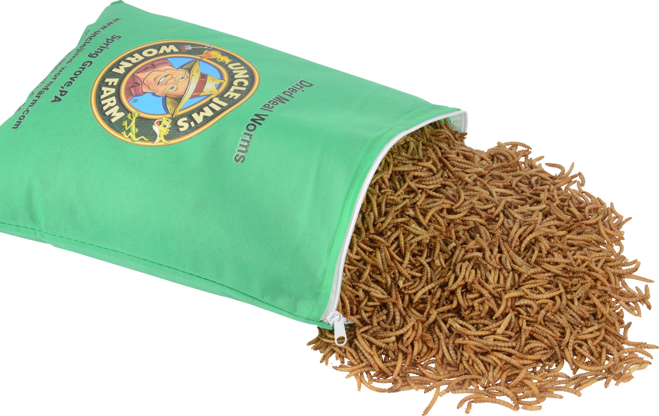 Dried Meal Worms.jpg