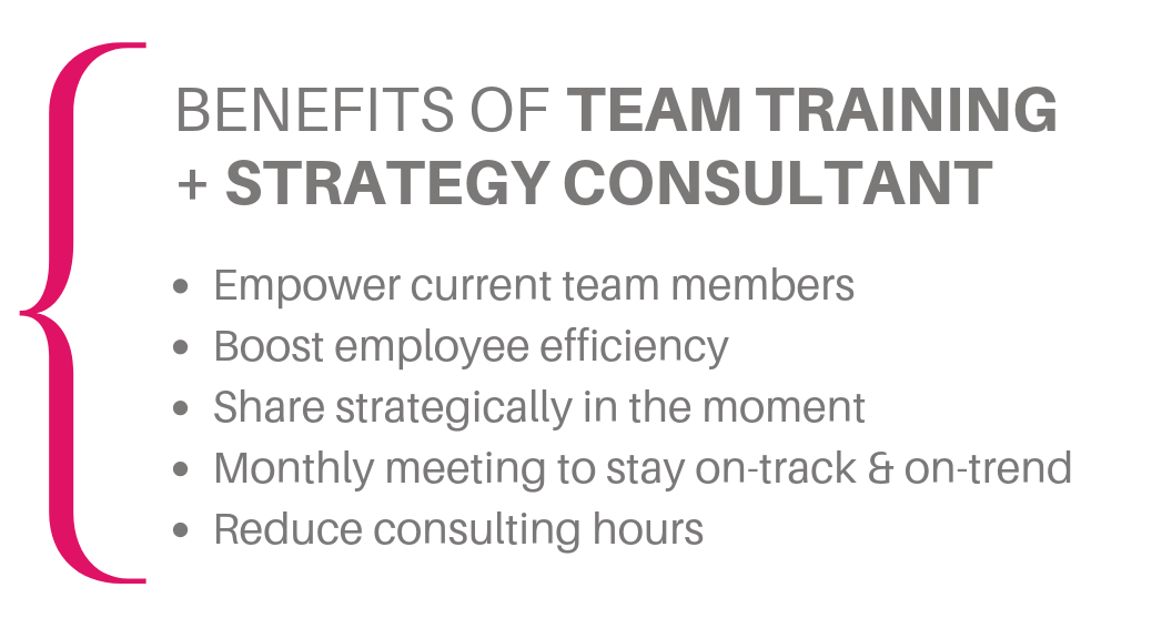 team training + strategy consultant.png