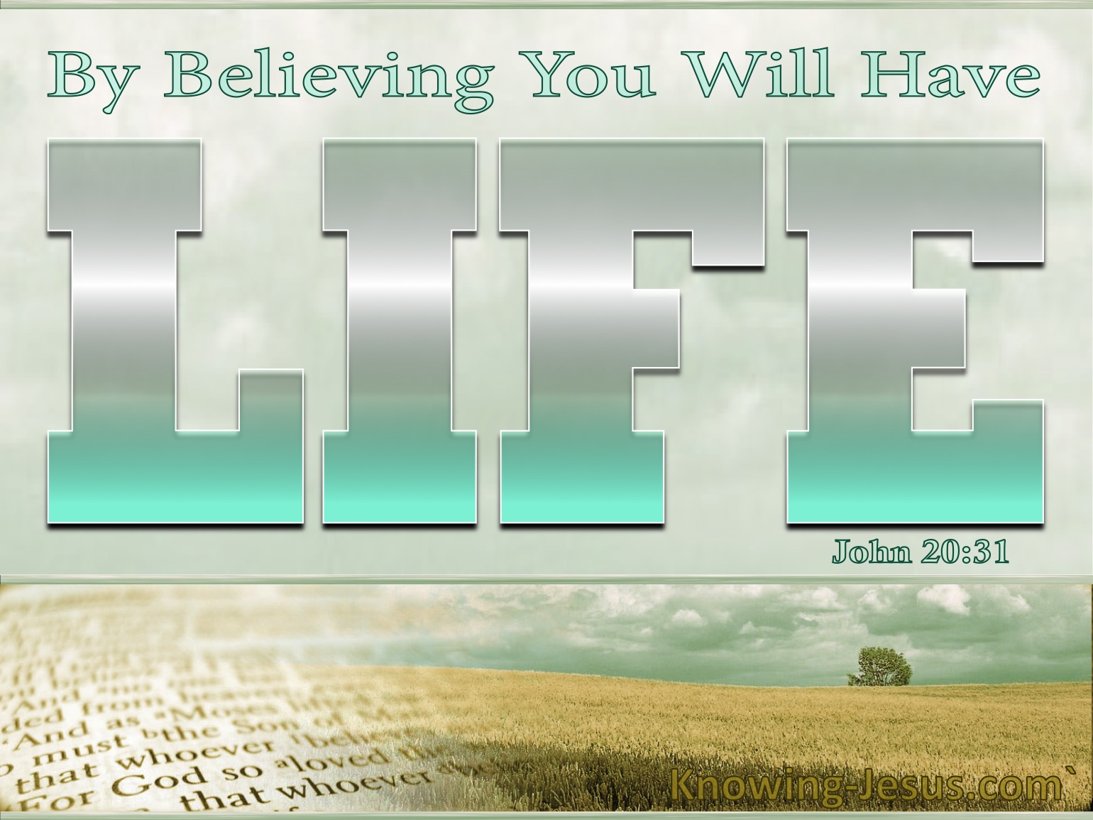 John 20-31 By Believing You WIll Have Life silver.jpg