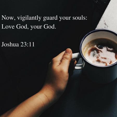 now-vigilantly-guard-your-souls-love-god-your-god-joshua-23-11.png