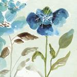 TR23717--Kabaker--Blue_Garden_I.jpg