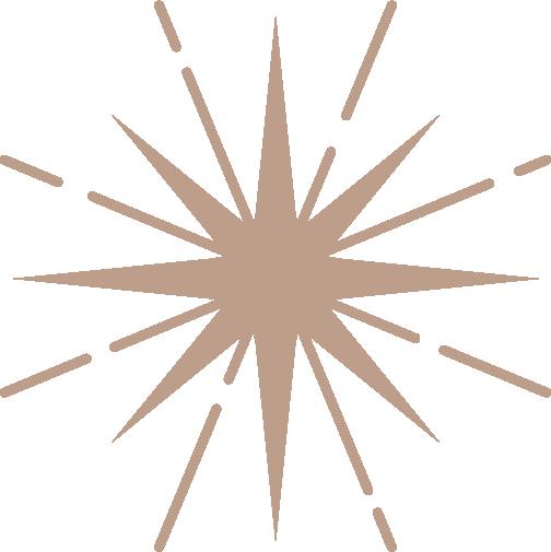 DivineFem_Brand-Guide_Star-Icon-Skin.png