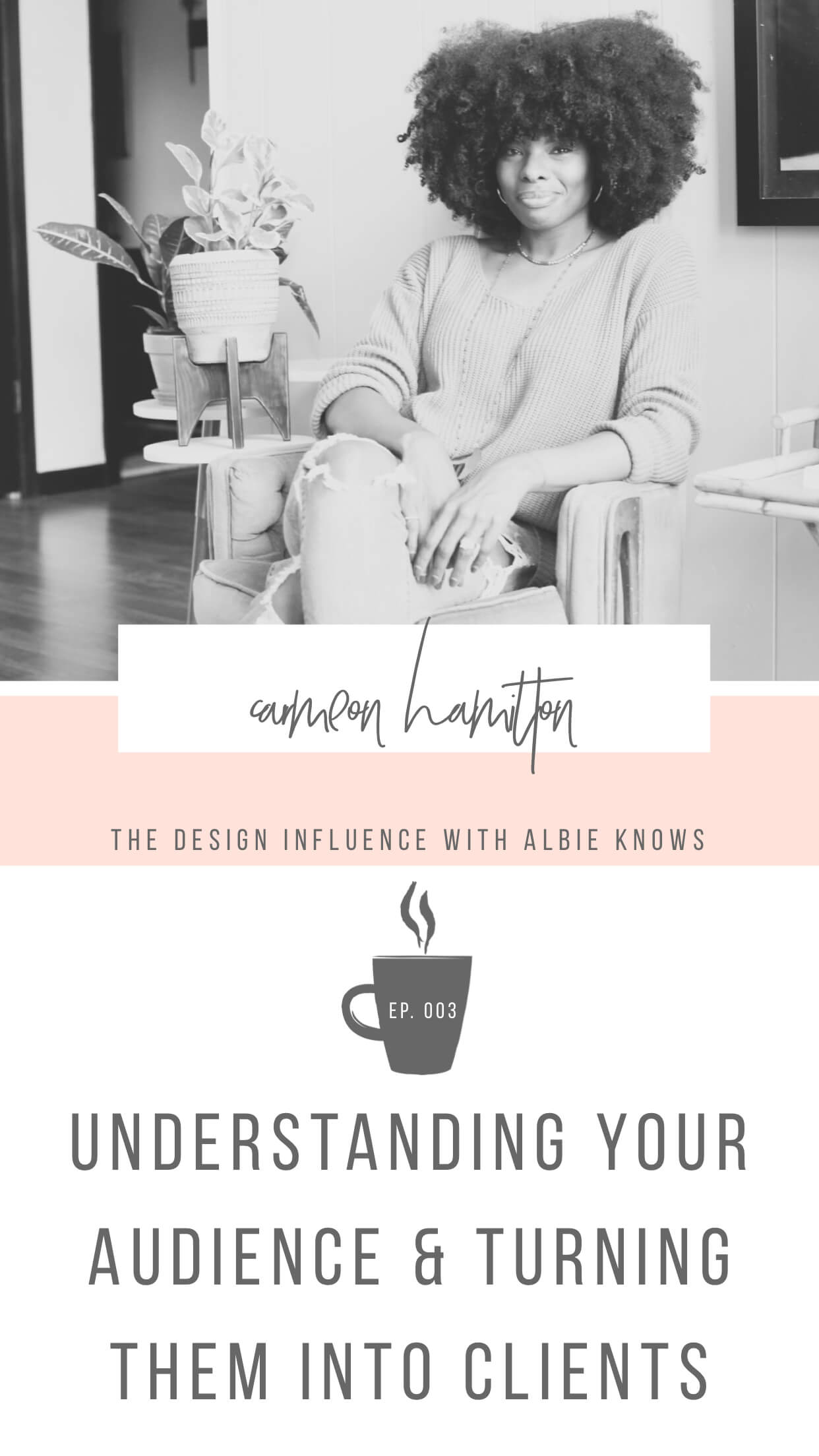 The Design Influence Episode 003: Understanding Your Audience & Turning Them Into Clients with Carmeon Hamilton 1.jpeg