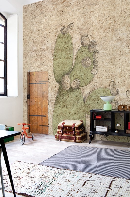 cactus wallpaper in a wall with a wood door