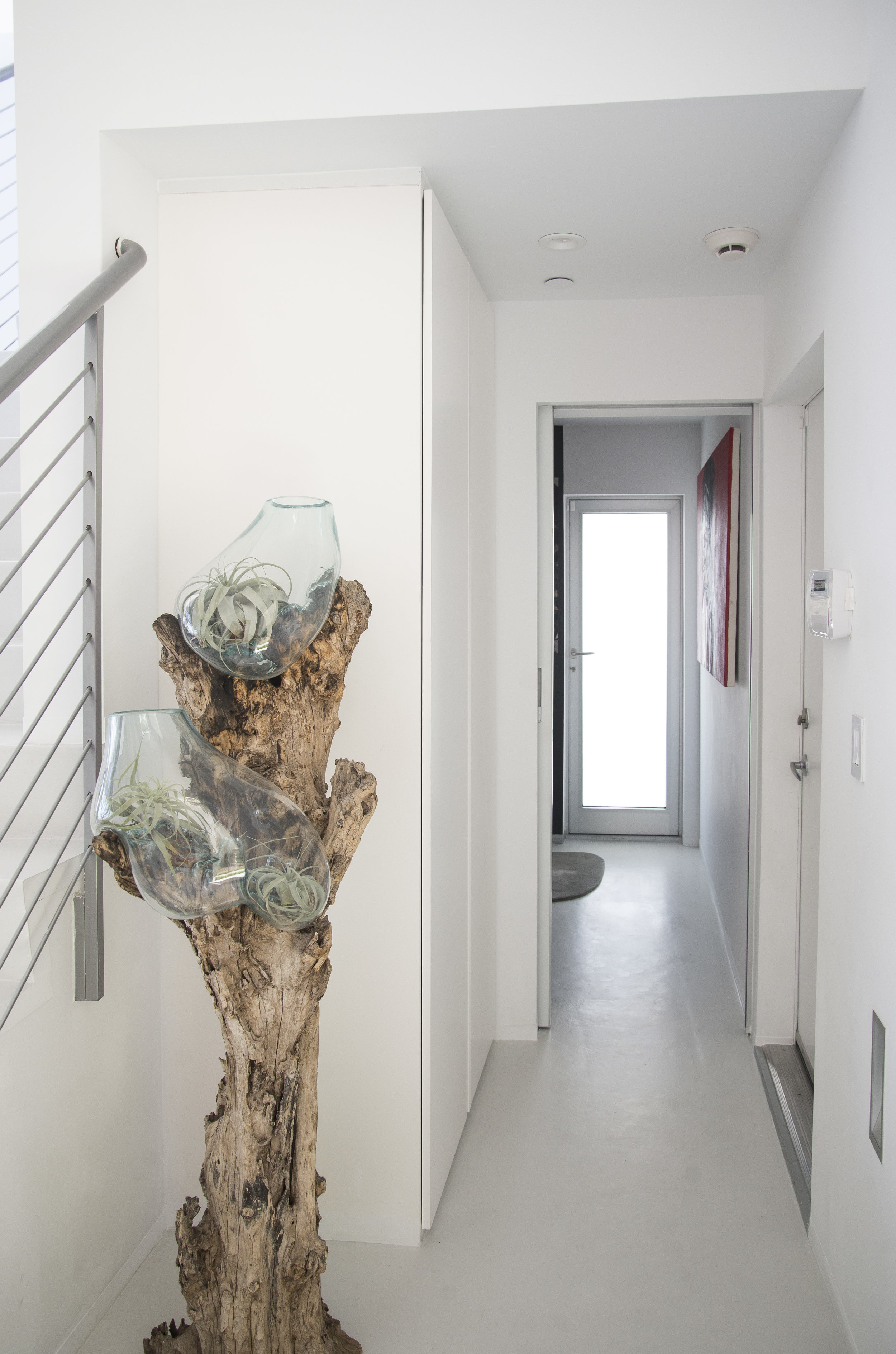 The olive tree with hand made glass vases adds the organic touch to this hallway.