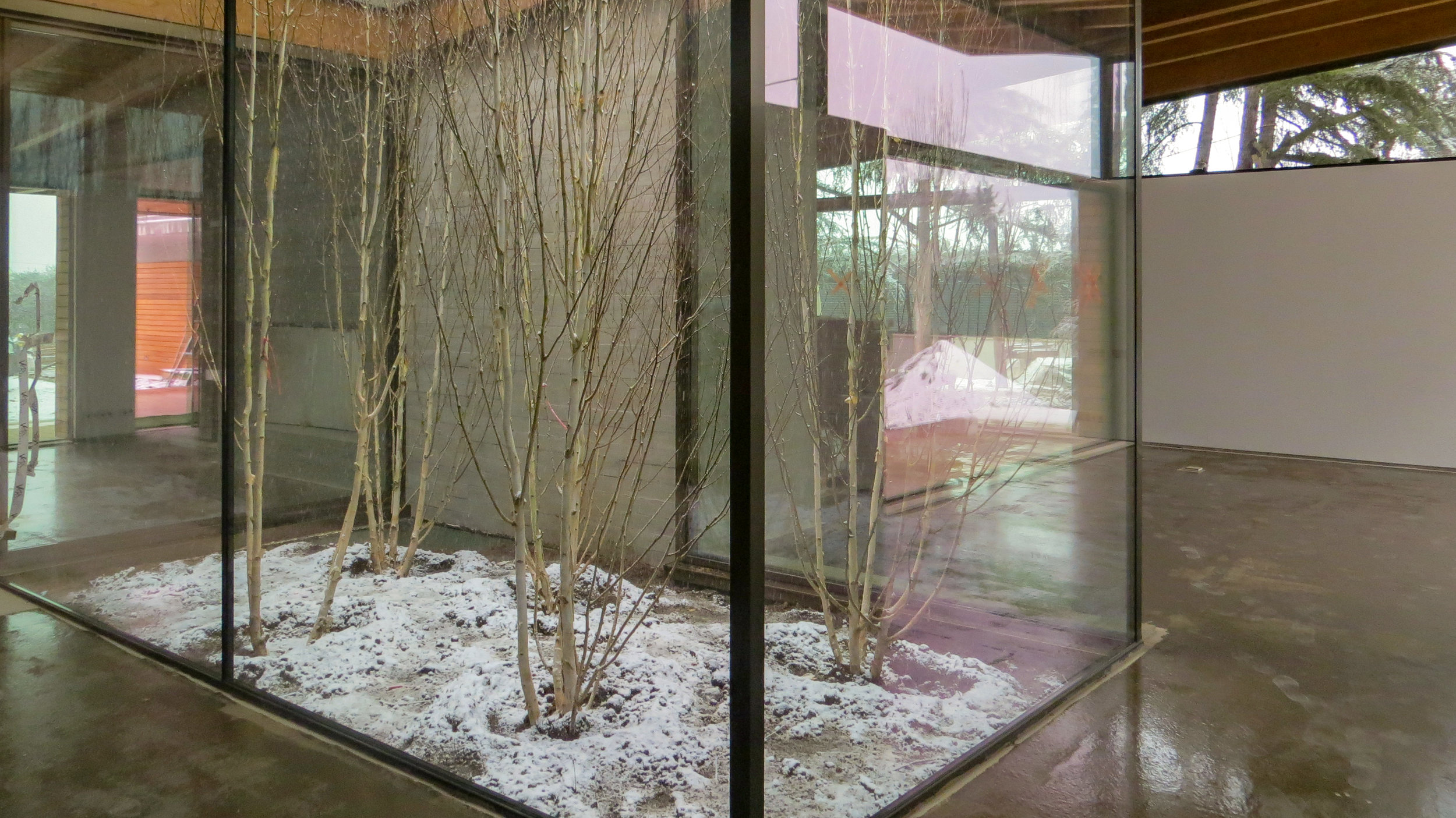 The snow is covering the floor of the interior garden.