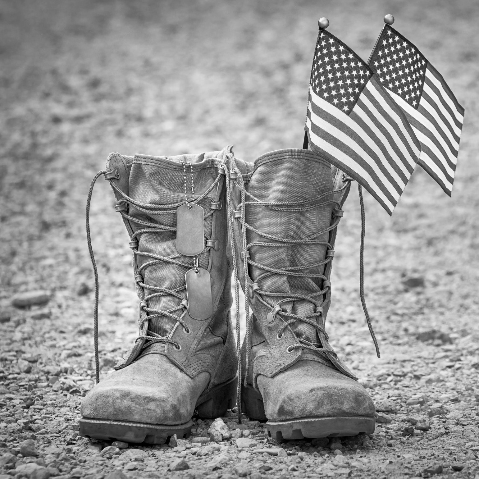 Click here to Take the Veteran's Survey -