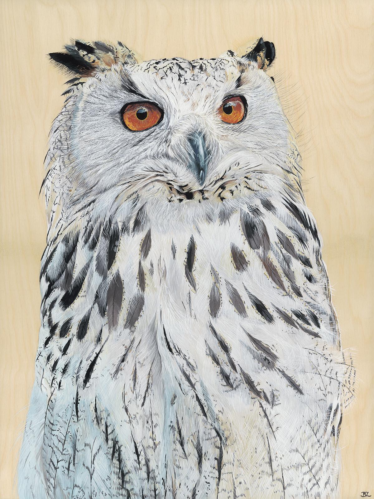Bekah Zeimetz Owl 18 X 24 MF FINAL 1200pixels .jpg