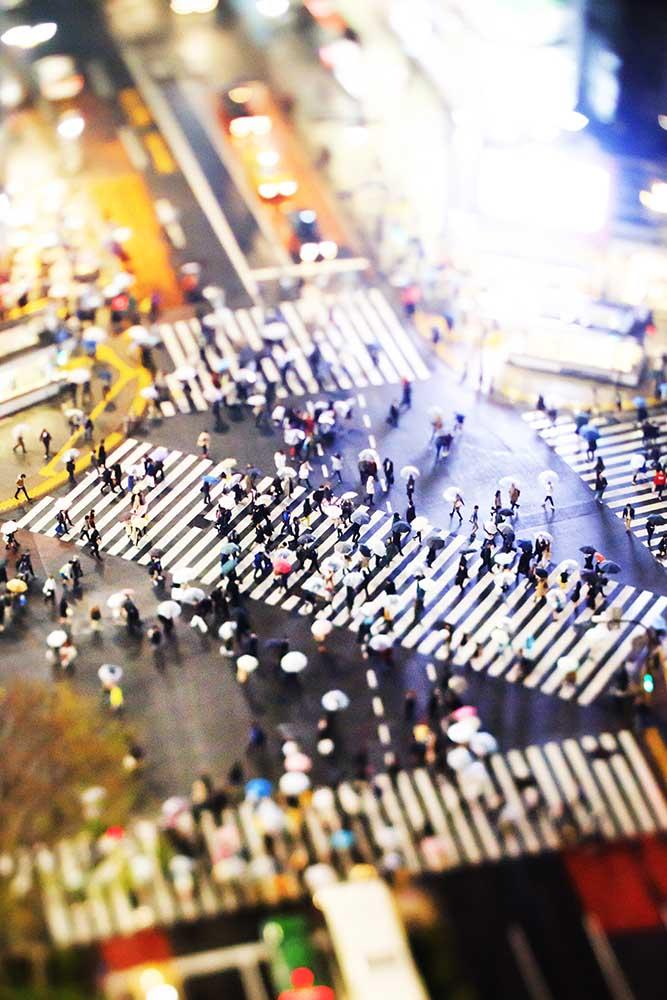 Shibuya Crossing - Soggiorneremo una notte nell'unico albergo da cui si gode della visuale ideale per fotografare l'attraversamento pedonale più famoso del mondo
