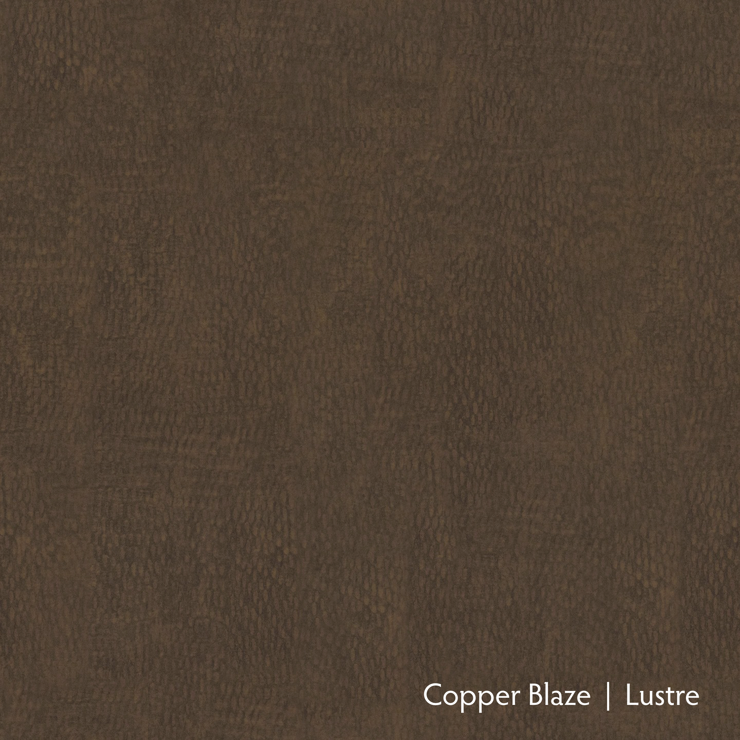 Copper Blaze