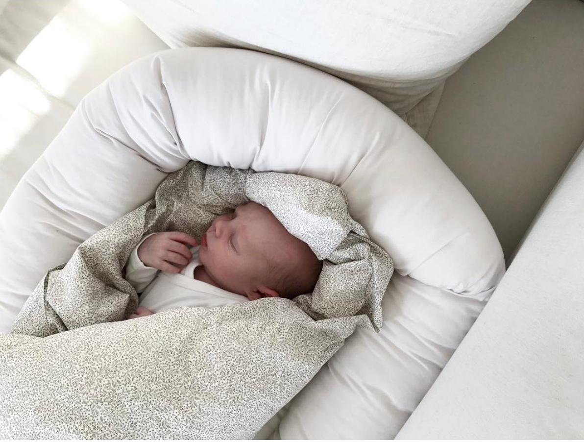 Frank, just a few days old, sleeping in his baby nest