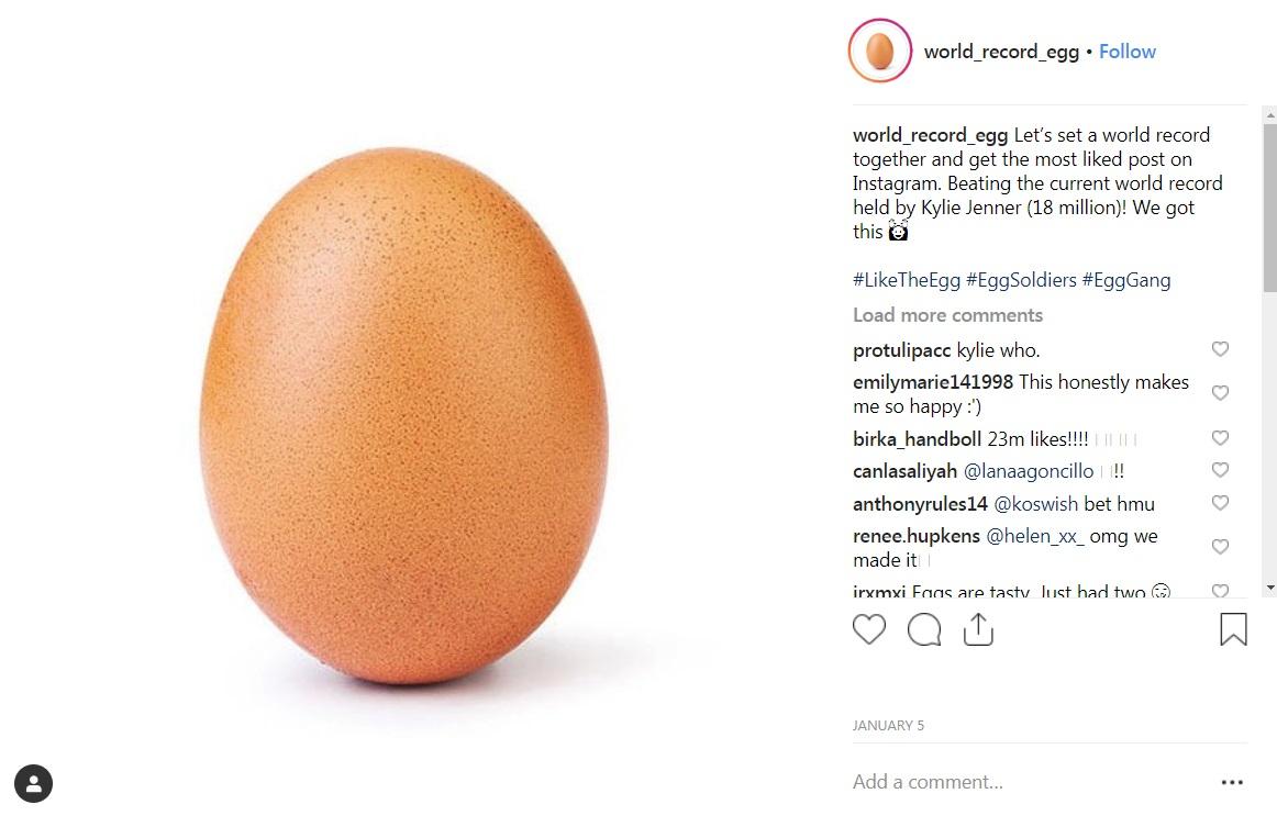 nm-egg-1401.jpg