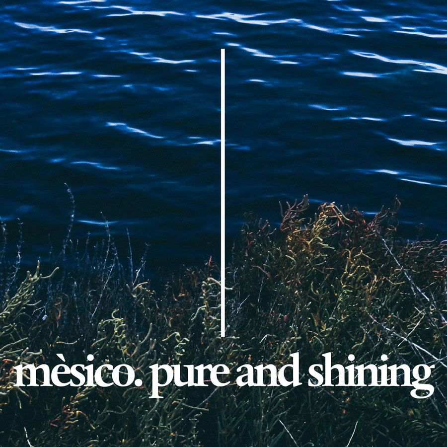 PURE AND SHINING - CD 10€ / mp3 5€