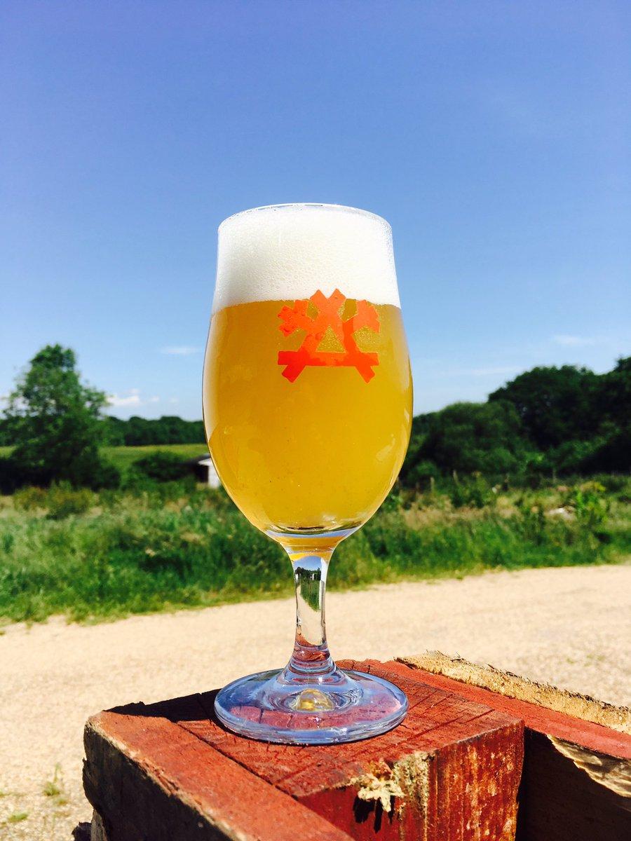 Vermont IPA in Gun Brewery glass