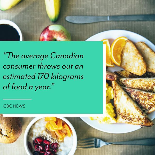 C'mon Canada…we can do better.⠀ ⠀⠀⠀⠀⠀⠀⠀⠀⠀ ⠀⠀⠀⠀⠀⠀ To be fair, food waste happens easily in the home. Leftovers get forgotten, produce rots before it can be used, and we all know that those items in the back of the fridge…well once something can't be seen and easily reached, the potential for it being wasted has to increase by at least 50% 🤷♂️⠀ ⠀⠀⠀⠀⠀⠀⠀⠀⠀ ⠀⠀⠀⠀⠀⠀ Thankfully, there are a ton of ways to reduce and even eliminate food wastage in the home:⠀ ⠀⠀⠀⠀⠀⠀⠀⠀⠀ ⠀⠀⠀⠀⠀⠀ →Meal Planning: How about scheduling a night where 'Leftovers' is on the menu? All the great meals you've whipped up during the week become free-for-all options.⠀ ⠀⠀⠀⠀⠀⠀⠀⠀⠀ ⠀⠀⠀⠀⠀⠀ →Grocery Lists: Do you go to the grocery store with a list of required items or do you pick up items on a whim? Often it's the items that we don't have a specific plan for that will get wasted.⠀ ⠀⠀⠀⠀⠀⠀⠀⠀⠀ ⠀⠀⠀⠀⠀⠀ →Freezer Bags: This one's almost too simple to list but it's an easy solution for wastage. Freeze your meals. If you've got ingredients that are going bad, make a feel with them and freeze it for later.⠀ ⠀⠀⠀⠀⠀⠀⠀⠀⠀ ⠀⠀⠀⠀⠀⠀ This isn't an exhaustive list. Food shouldn't be and doesn't have to be wasted.⠀ ⠀⠀⠀⠀⠀⠀⠀⠀⠀ ⠀⠀⠀⠀⠀⠀ C'mon Canada…we can do better 👊⠀ ⠀⠀⠀⠀⠀⠀⠀⠀⠀ ⠀⠀⠀⠀⠀⠀ ⠀ .⠀ .⠀ .⠀ .⠀ .⠀ #BeTheChange #Canmore #Alberta #SmallBusiness #AlbertaBusiness #SMB #AGBusiness #AgTech #Agriculture #AgriTech #Hydroponics #AlbertaTourism #CanadianBusiness #BowValley #FarmToTable #FoodSystem #Sustainability #BeTheChange #KeepItLocal #GoLocal #KnowYourFarmer
