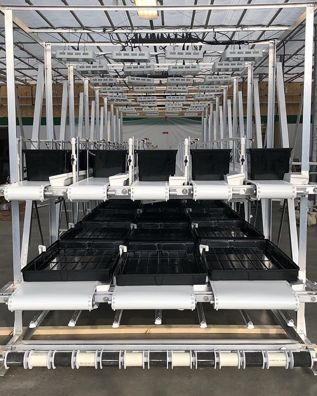 PROGRESS! ⠀⠀⠀⠀⠀⠀⠀⠀⠀ ⠀⠀⠀⠀⠀ Want to learn more about our hydroponics system here in Canmore? You're going to have to come to our Launch Event (see link in bio). ⠀⠀⠀⠀⠀⠀⠀⠀⠀ ⠀⠀⠀⠀⠀ On April 23rd from 5-9PM, we're opening the doors to the greenhouse to show you all what we've been working on. If you'd like to hear specifics from the Lads about who we are and what we're doing, aim to come at 730PM since we'll have a formal presentation at that time. ⠀⠀⠀⠀⠀⠀⠀⠀⠀ ⠀⠀⠀⠀⠀ We'll be providing snacks and drinks from other Canmore businesses too and if you get your tickets soon, you'll land yourself a Lettuce Lads Jute Shopping Bag! ⠀⠀⠀⠀⠀⠀⠀⠀⠀ ⠀⠀⠀⠀⠀ Spread the word! See you soon!