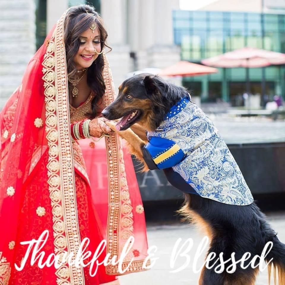 Indian Bride_dog.jpg