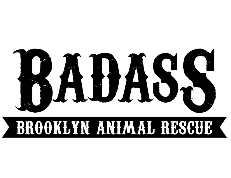 Badass Brooklyn Animal Rescue - Partner Dates: November 3-4Badass Brooklyn Animal Rescue is a 501(c)3 non-profit, all-breed dog rescue composed of a network of fosters and volunteers who work together to rescue sweet, loving, adoptable dogs from high kill, rural shelters in the southern U.S. states and get them adopted into wonderful forever homes.http://www.badassbrooklynanimalrescue.com