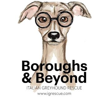 Italian GreyHound Rescue - Partner Dates: October 21Our mission is to find homes for rescued Italian Greyhounds and to educate the public on the care and training required by this breed.While we may dream of a day when every Italian Greyhound lives out its life in a happy, loving home, we know that goal is unlikely in the foreseeable future. There are times when dogs need extra resources to secure a loving home. We ideally would love to have the capacity to accept every needy Italian Greyhound into our foster program and provide advanced veterinary services with no fear of financial ruin for the long-term funding of the program.http://www.igrescue.com/index.shtml