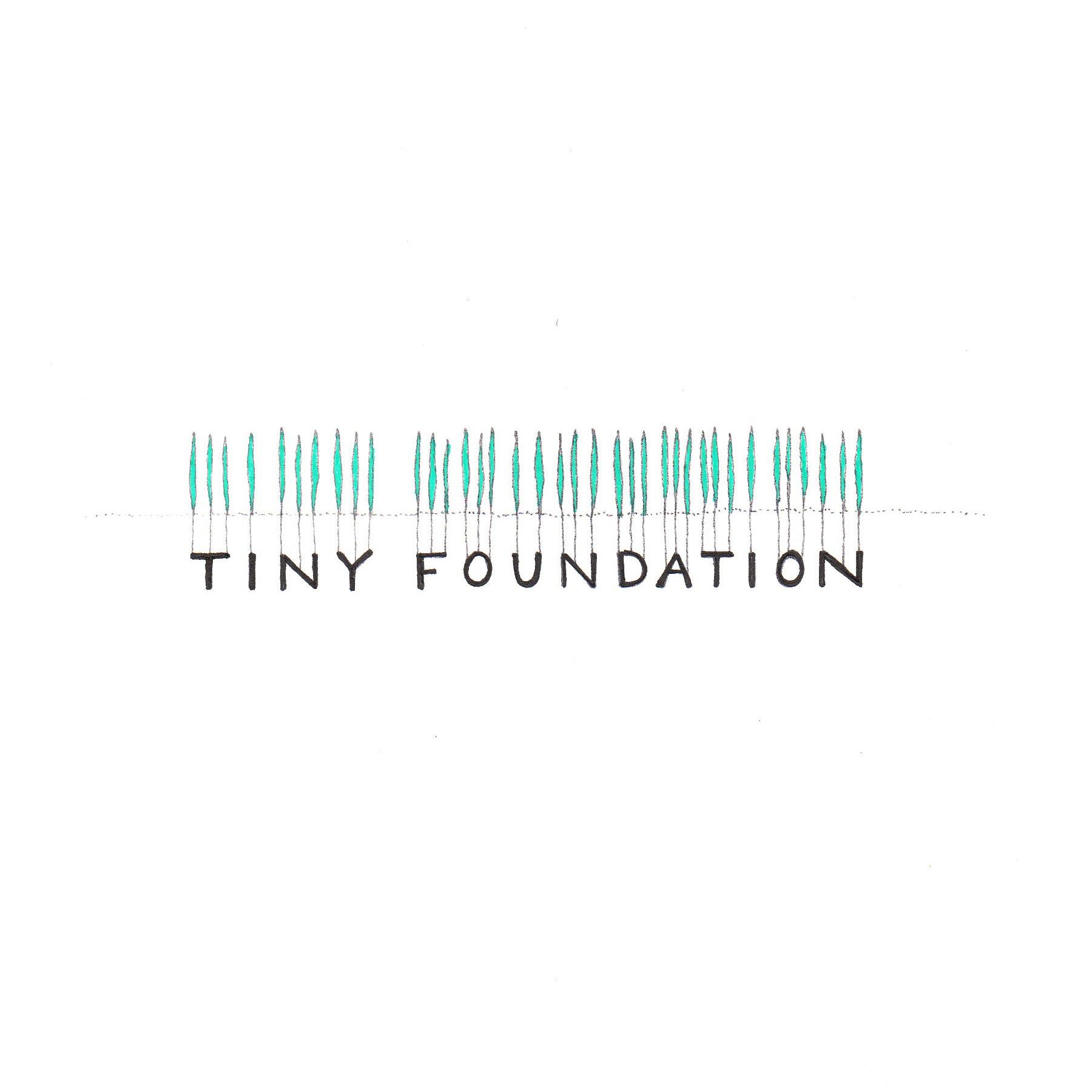 Tiny Foundation logo