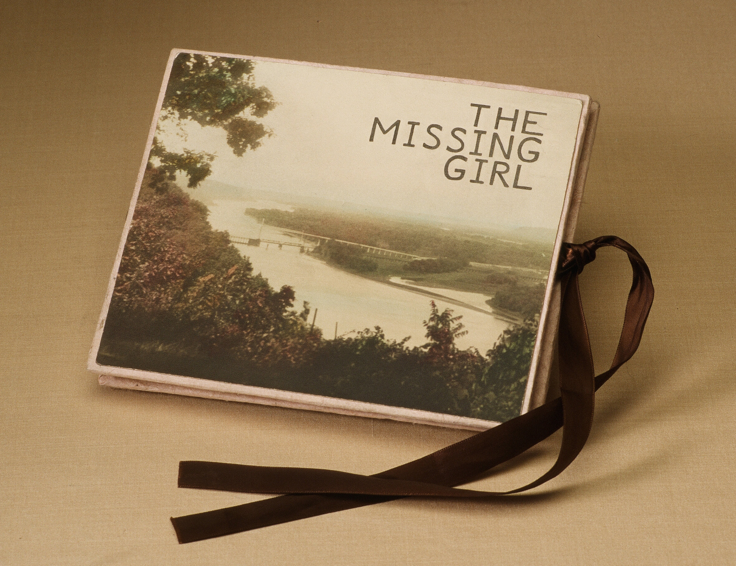 the missing girl_cover_crop.jpg