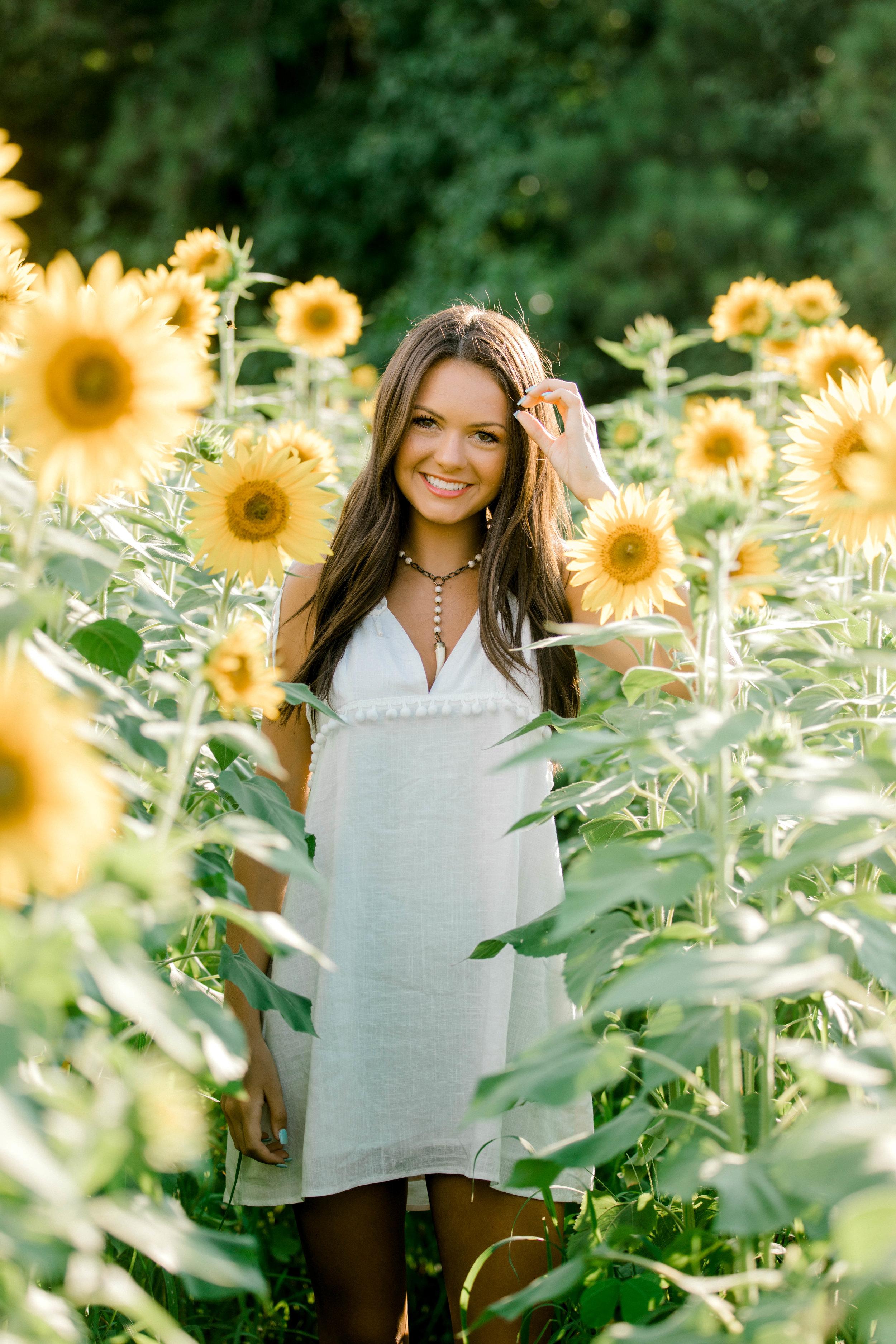 sunflower (34 of 152).jpg
