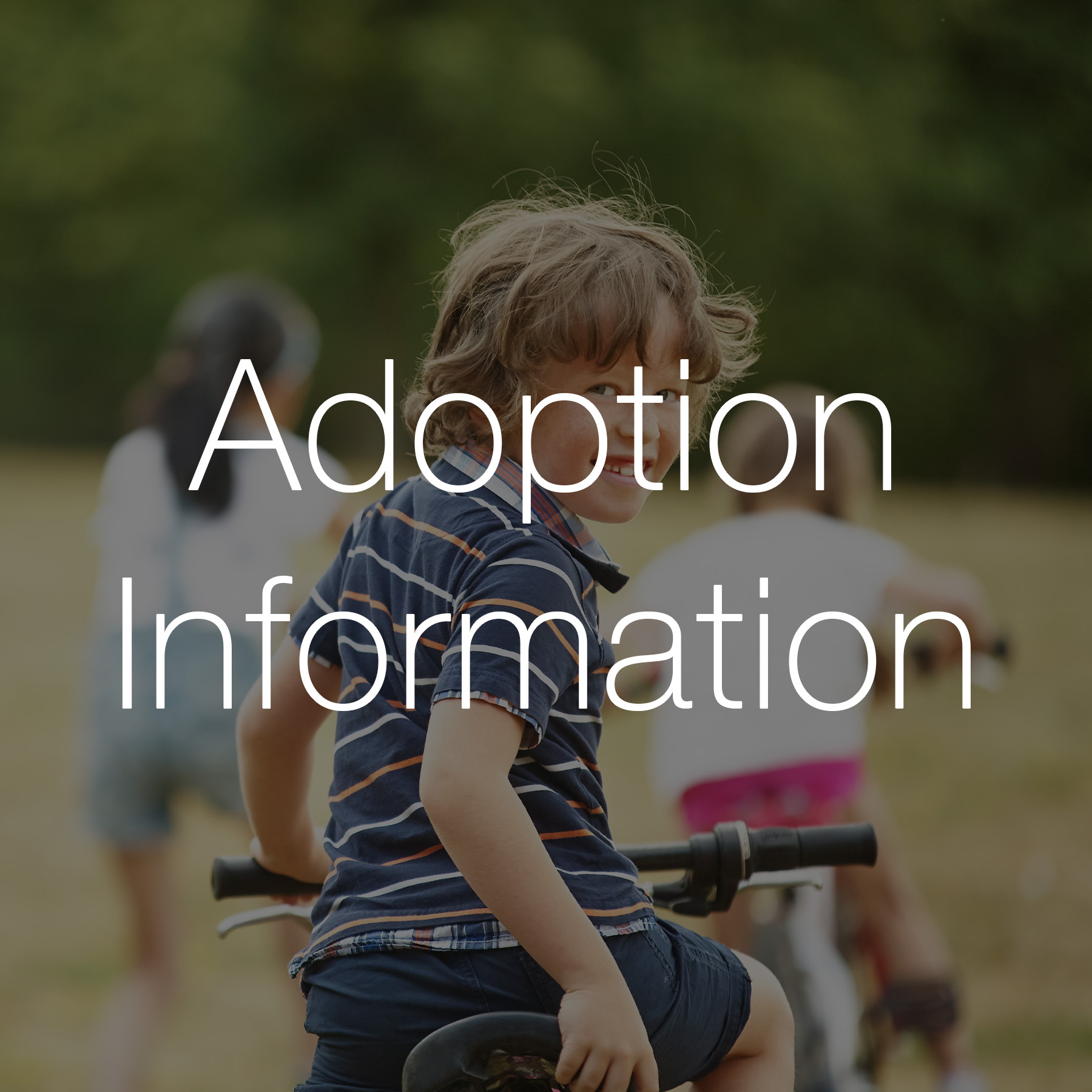 Adoption Thumbnail 2.jpg