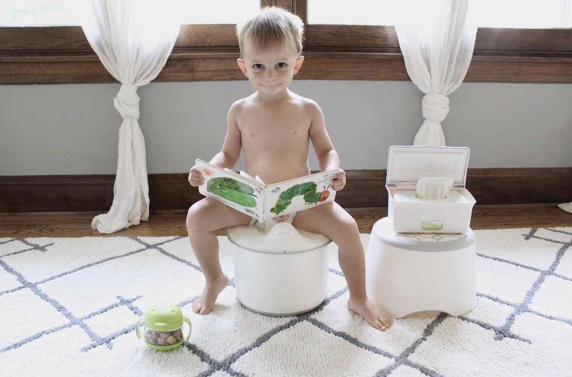 POTTY TRAINING   framework of various programs