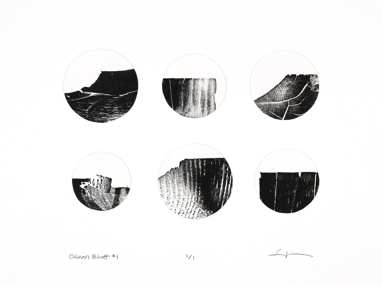 ocean bluff 1 , reclaimed wood monoprint, 2018