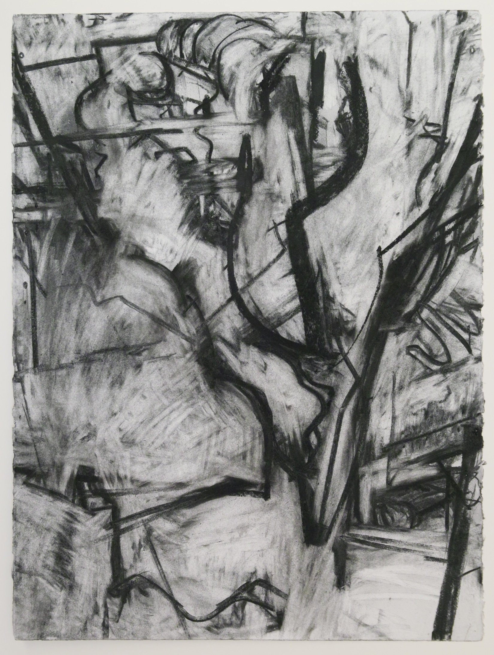 "From the Studio III, 30"" x 22"", charcoal on paper"