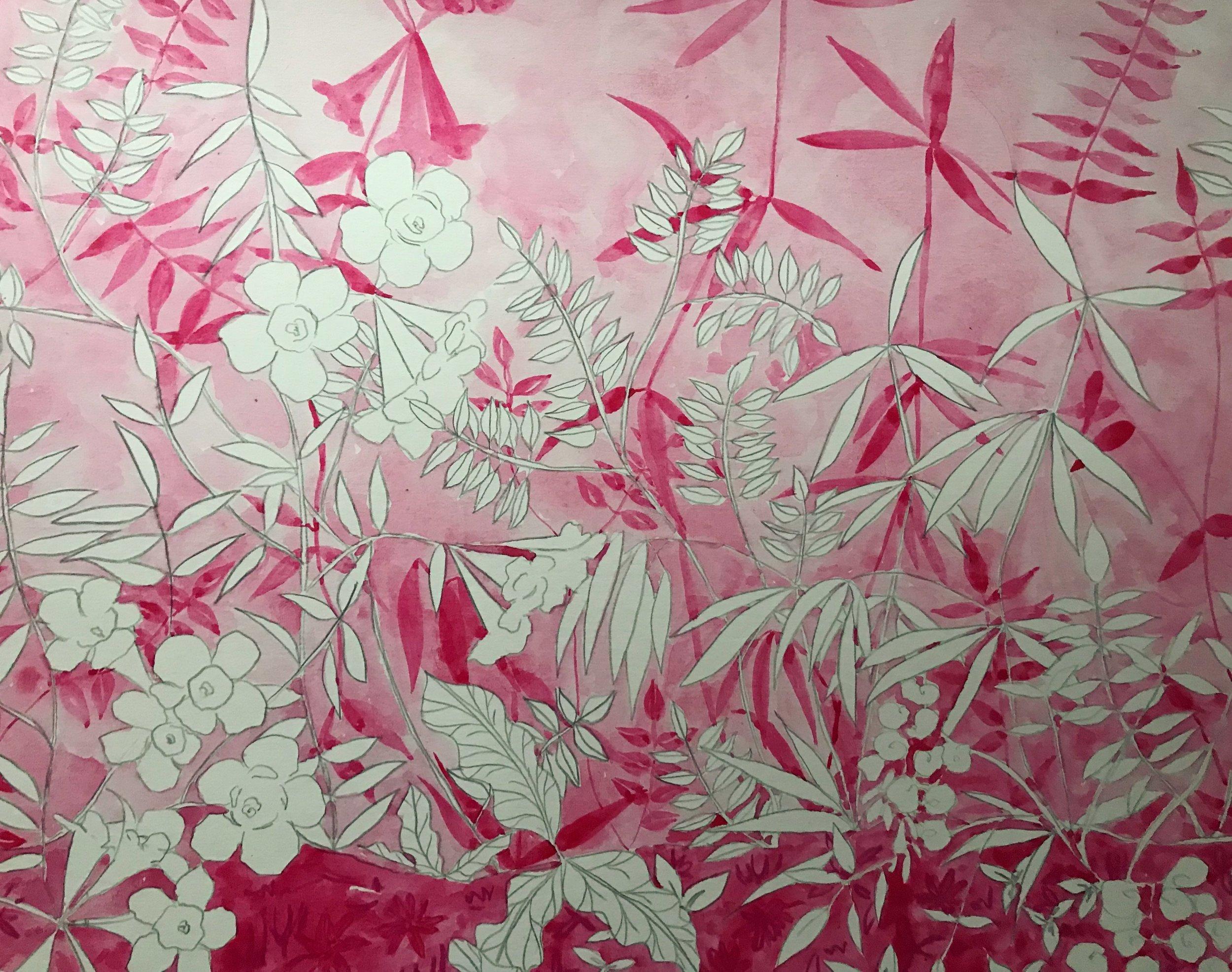 Pink Jessamine I.JPG