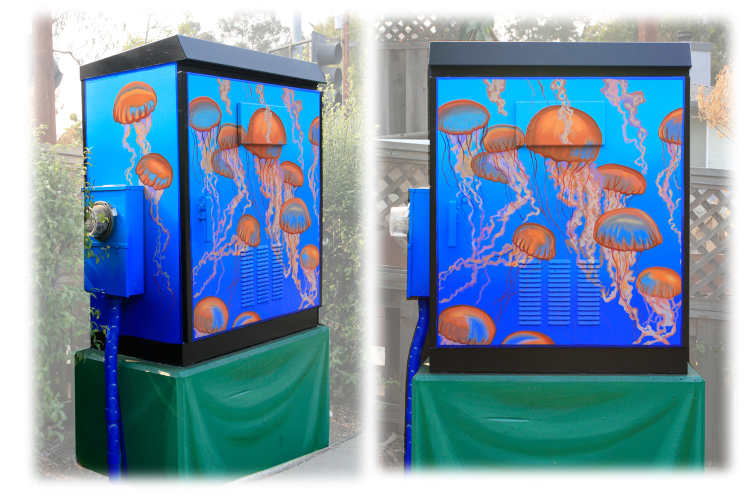 The city of Capitola, CA chose me to paint a series of sea life murals on traffic signal boxes. This was my first. At Capitola Rd & 30th Ave.
