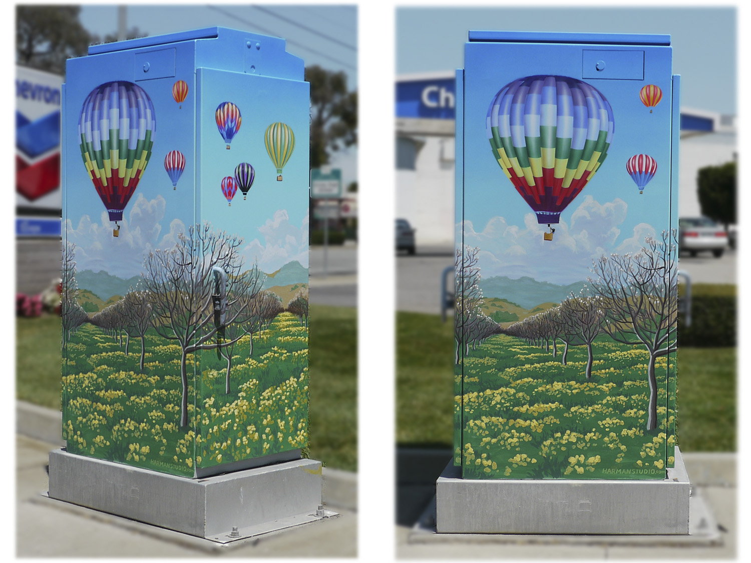 The city of Gilroy, CA chose me to paint a series of nature murals on traffic signal boxes. Hot air balloons are often seen in the Central Valley.