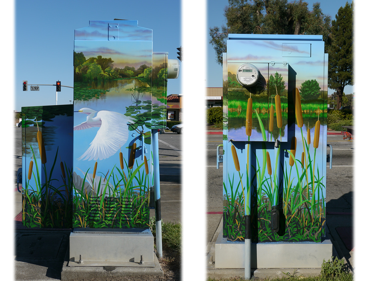 This large box has an ecology theme, featuring the beautiful wetlands found in the area near Gilroy.