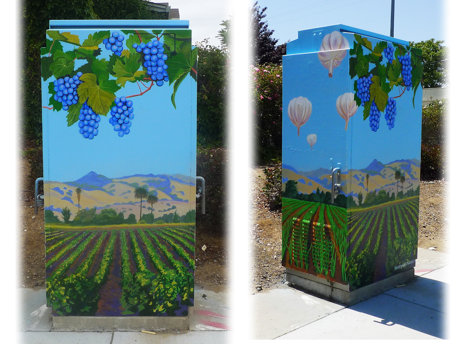 Gilroy is famous for it's garlic agriculture, as well as being home to many fine vineyards.