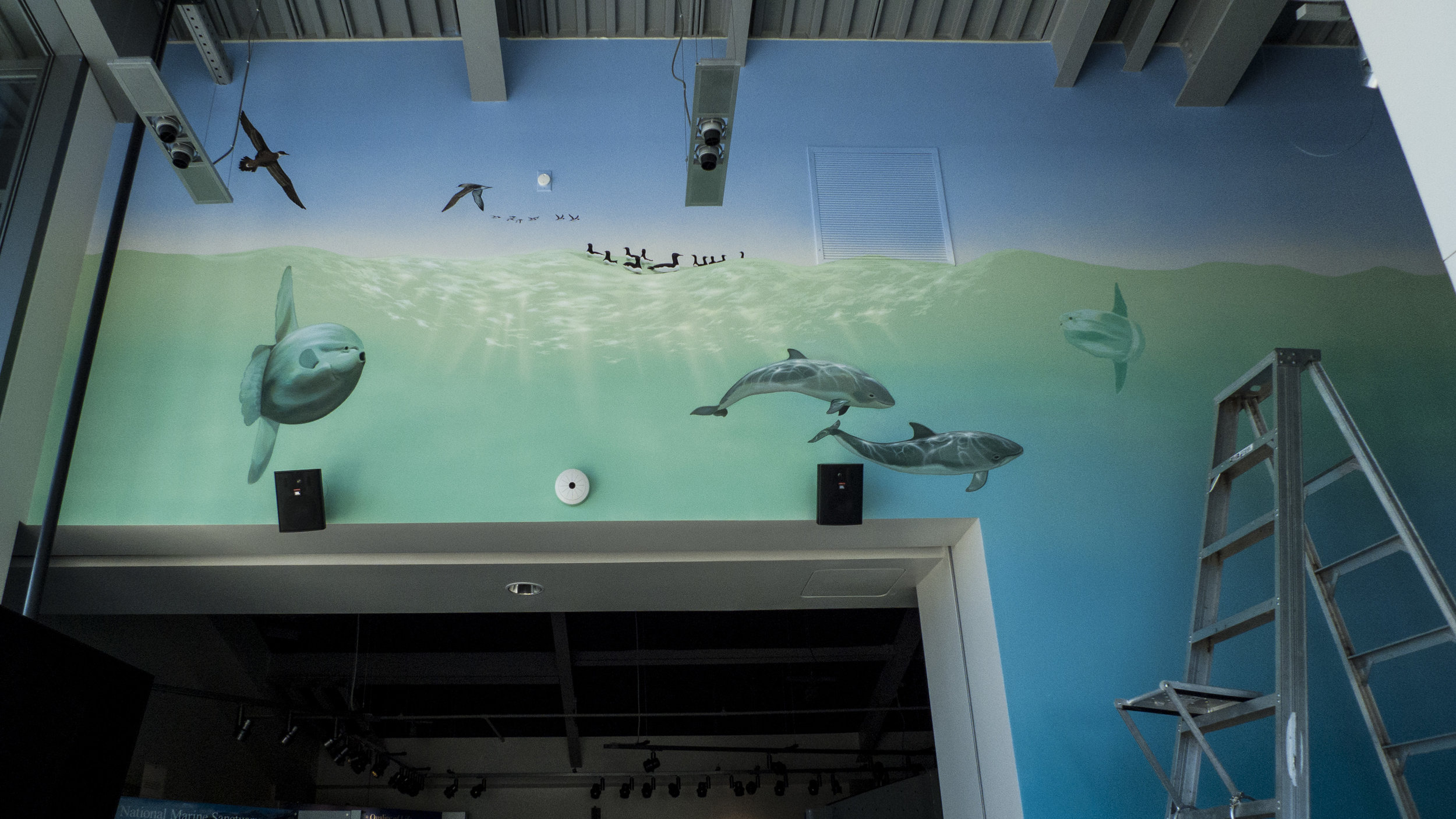 This is the Marine Sanctuary Exploration Center right by the Santa Cruz Wharf. It features high tech interactive displays… and my mural.