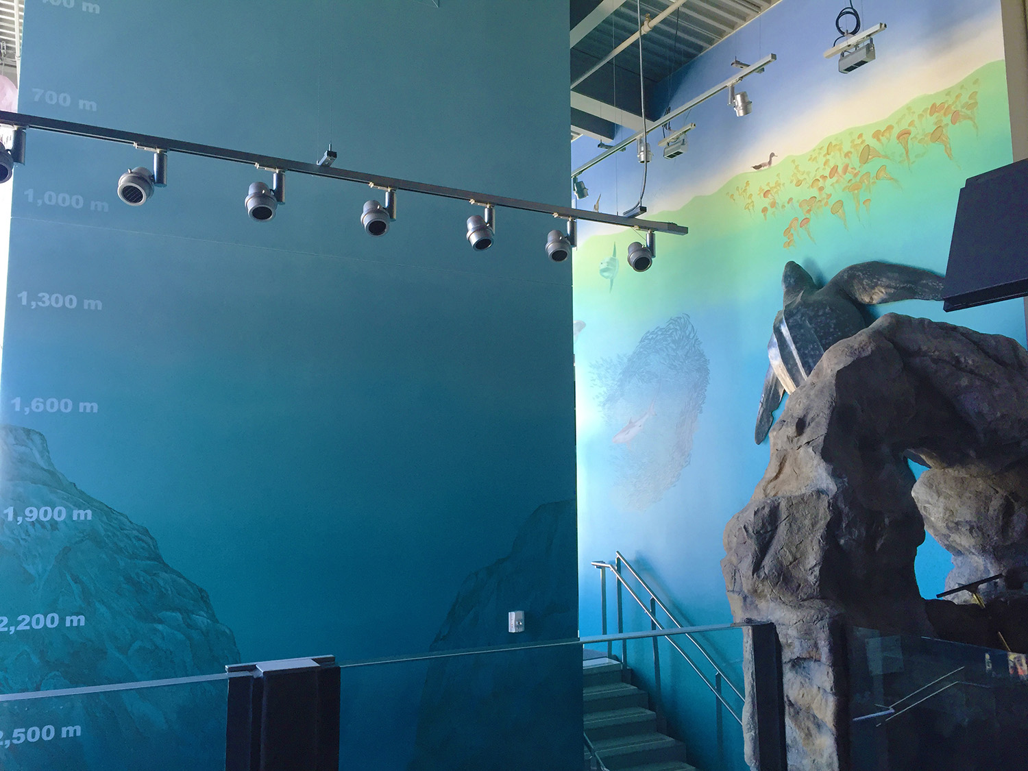 I  painted the underwater canyon with depth markers on the elevator column as well as the leatherback turtle mounted on the wall, which was molded from an actual turtle,