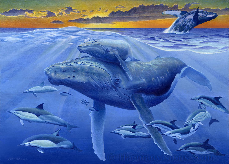 humpback1.jpg
