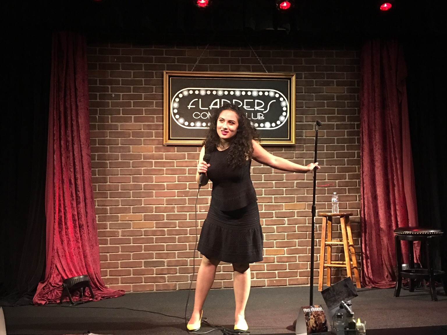 Sarah Fatemi - Stand-Up Comic | Writer | Actor | Creator Saffron 'N Rose