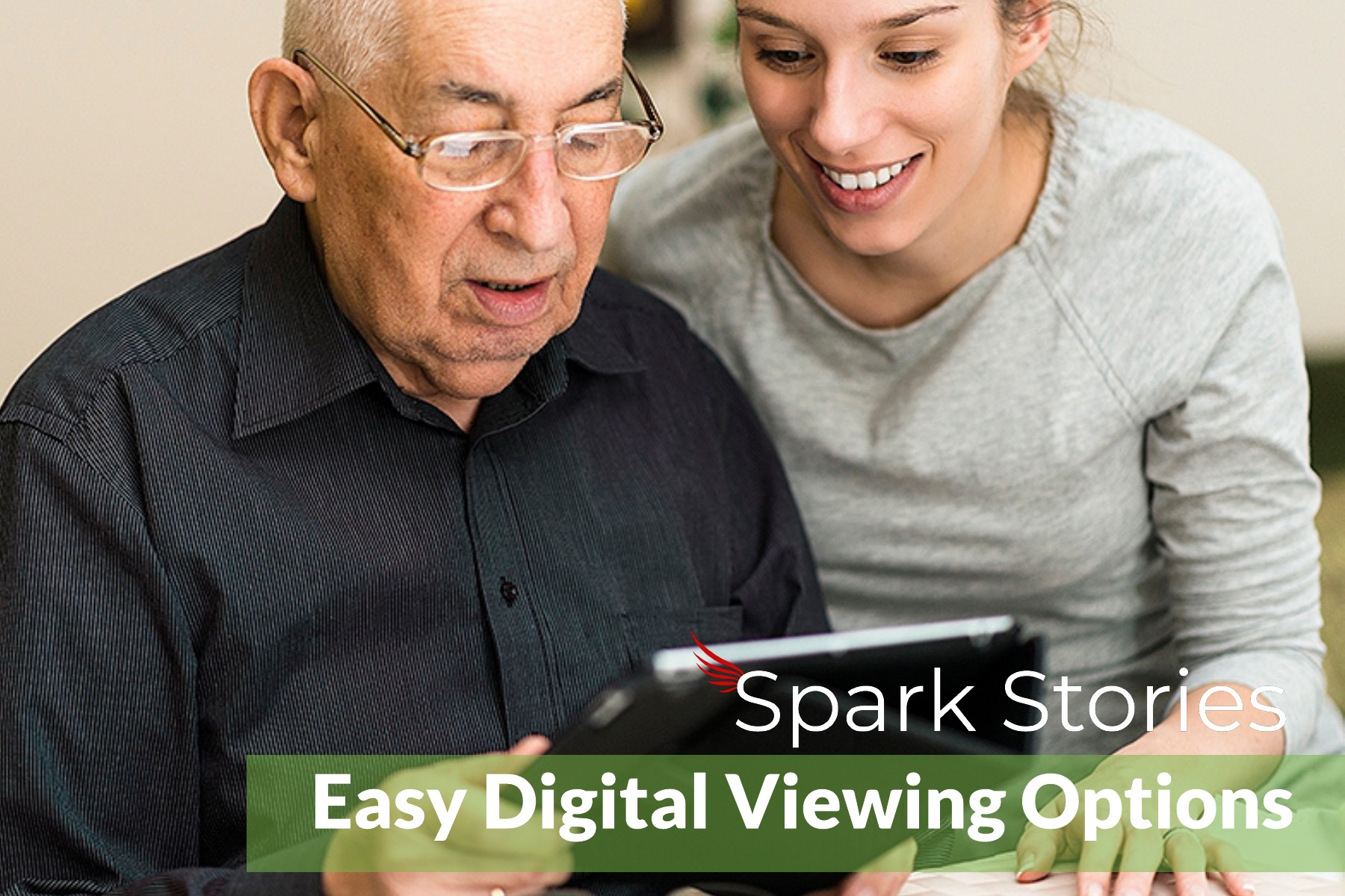 Spark Easy Viewing Options.jpg