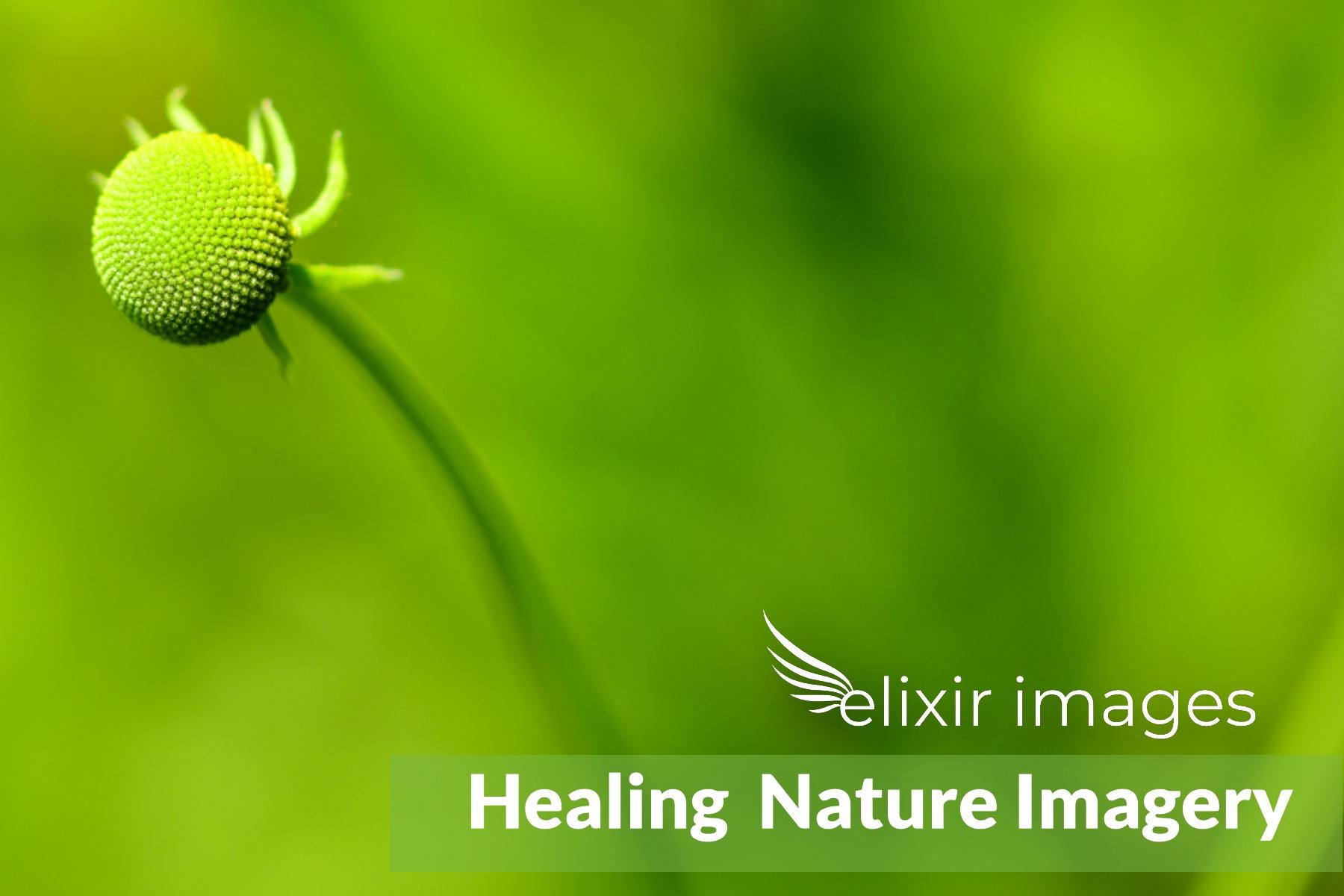 EI Healing Imagery 6.jpg