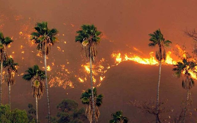 We are on our way to Los Angeles today for @remode 2018. Ironically, wildfires in California are a reminder that climate change is real.  Credit: Nick Ut/ AP . . #californiawildfires #losangeles #remode2018 #goodlooping #sustainablefashion #sustainability #climatechange change #ecofashion