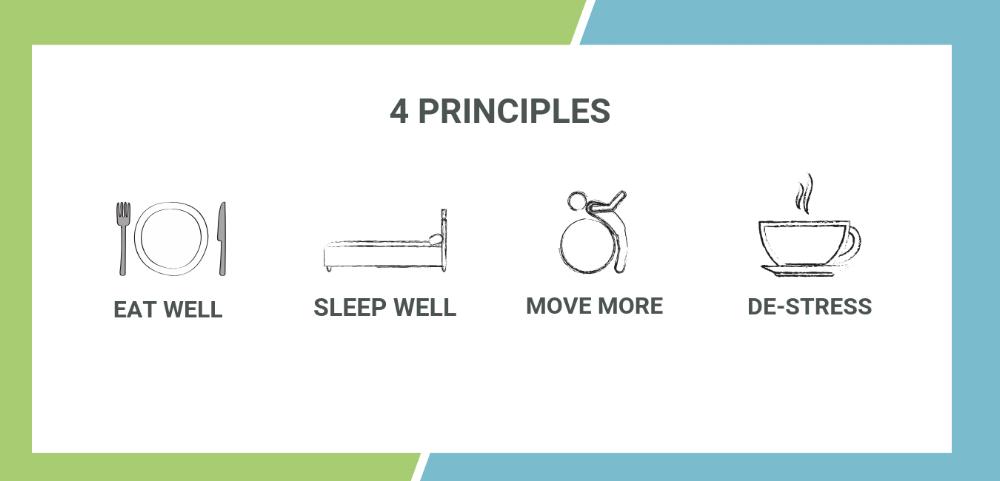 4 PRINCIPLES.png