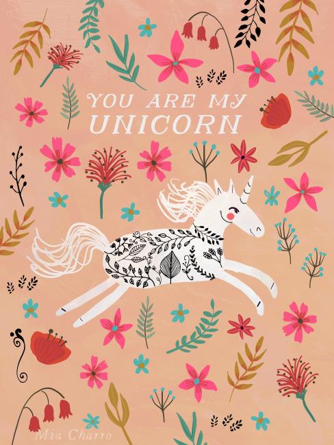 you are my unicorn-soc