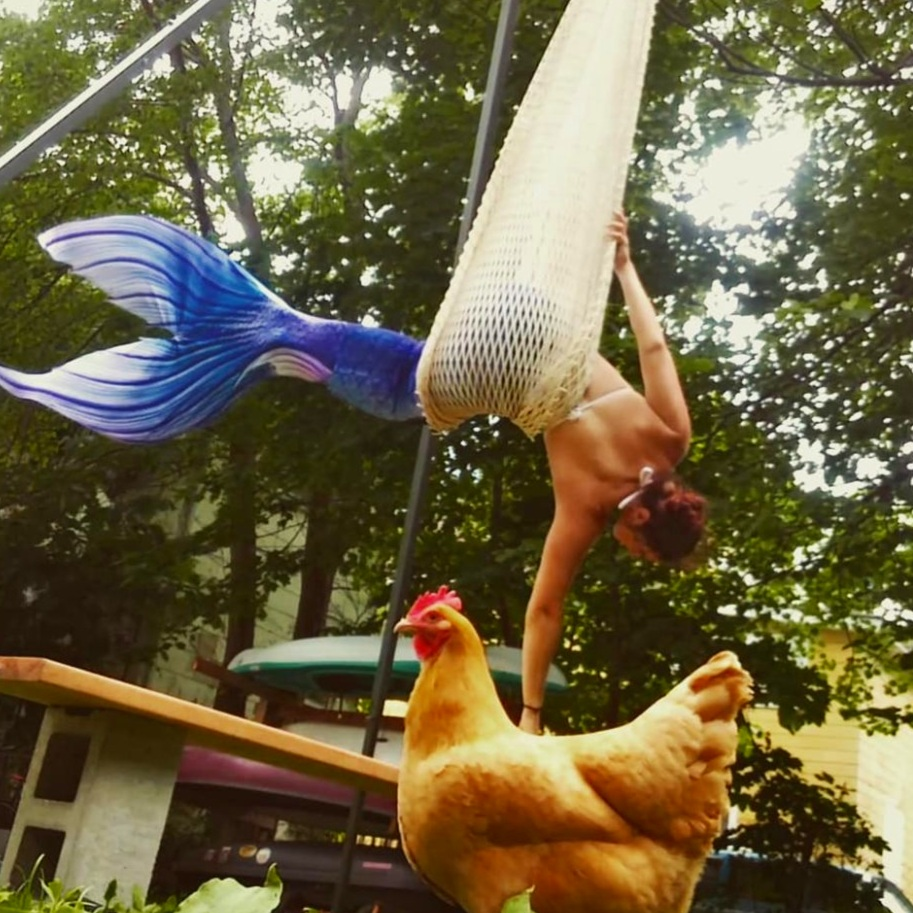 The Glamorous Life.  Flying Mermaid Rehearsals on the back yard farm, chickens supervising.