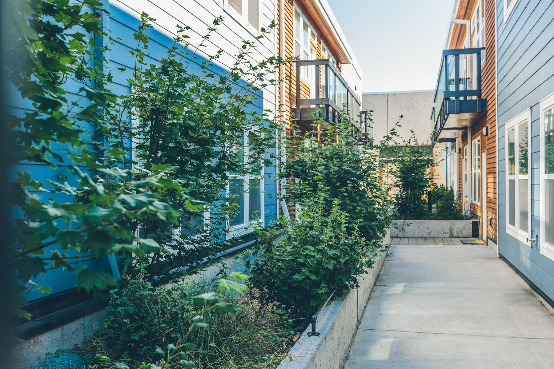 ekoliving-property-spruce-03.jpg