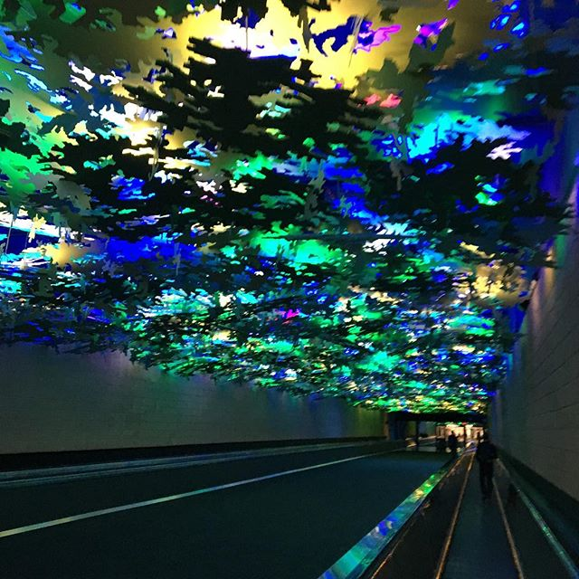 ATL is not my favorite airport but I love the walkway between gates A and B #sales #salestravel #saleslife #saleslifestyle #selling #businesstravel #businesstrip